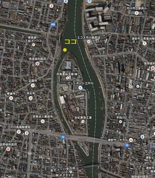 旧江戸川うなぎ2.jpg